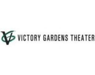 Race Representation In Theater Panel Discussion Victory Gardens Theater National